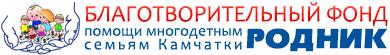 """Благотворительный фонд """"Родник"""""""